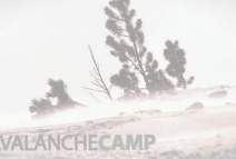 Avalanche Camp - Trailer